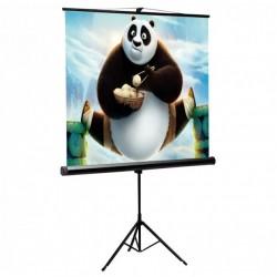 Schermo di Proiezione per videoproiettori con Treppiedi 112'' 200x200 PSMT-112