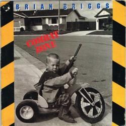 Brian Briggs - Combat Zone (US 1982 Bearsville BRK 3627) LP